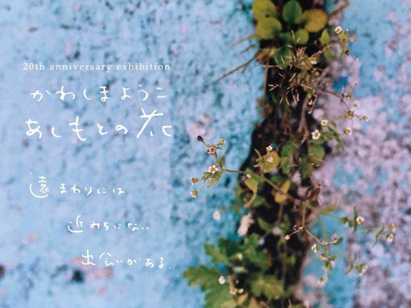 """かわしまようこ 20周年記念展 """"あしもとの花"""""""