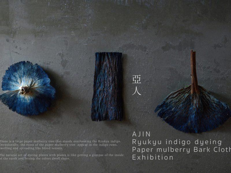 亞人 琉球藍染と梶の樹皮布展
